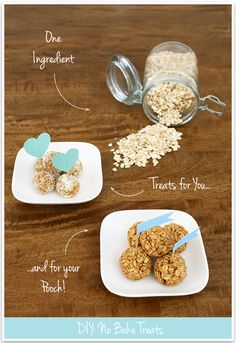 no bake dog treats