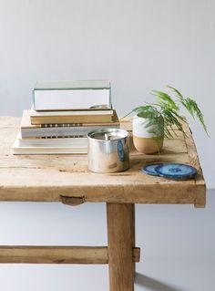 planter i interiøret, stylist Sille Tingstadengen, fotograf anne bråtveit
