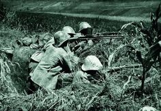"""Marine machine gun team with Browning awaiting an expected Chinese counterattack Korea on the """"Quantico"""" Line date unknown. History Online, Korean War, Modern Warfare, Military History, Armed Forces, World War Two, Troops, Wwii, Pictures"""