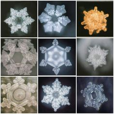 "Say whaaat?  Never forget the power of your words. These are not snowflakes they are water crystals formed when words like peace or love were written on paper and taped to the containers. Pics from ""The Hidden Messages in Water"" by Matsura Emoto."