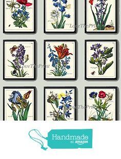 Antique Flower Print Set of 9 Beautiful Botanicals Blue Colorful Iris Lily Spring Summer Green Graden Nature Plants Home Room Decor Wall Art Unframed from LoveThePrint https://www.amazon.com/dp/B01MDRH817/ref=hnd_sw_r_pi_dp_CWteybXEKWWG4 #handmadeatamazon