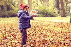 I found the magical leaf by dhinivh, via Flickr
