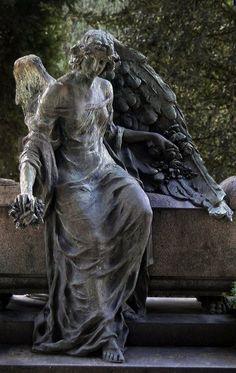 #angel Angel Gedanken.