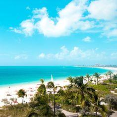 Dreaming of an Island Getaway?