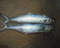 vissen / fish