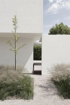 dezeen — House DZ in Mullem by Graux & Baeyens Architecten . Houses Architecture, Minimalist Architecture, Landscape Architecture, Interior Architecture, Ancient Architecture, Sustainable Architecture, Garden Landscape Design, Landscape Grasses, Backyard Landscaping