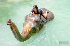 Laos:  People and animals in harmony