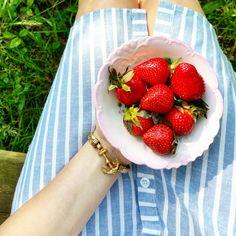 Strawberries & Stripes Instagram: pennsylvaniaprep1997 #showyourropes #kjp #sarahvickers #sarahkjp #campfoxhawk #prep #preppy #prepster #ivy #ivyleague #strawberries #summer #fun #adventure #fashion #style #womensfashion #charlotterusse #anchor #jewelry