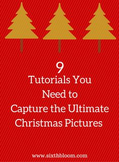 Photography Tips | Christmas pictures, christmas picture tips, 9 Tutorials You Need to Capture the Ultimate Christmas Pictures