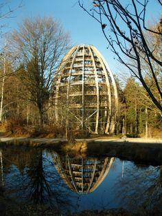 Das Ei im Nationalpark bayerischer Wald.