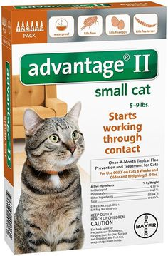 Advantage II Small Cat 6-Pack -- Check out this great product. (This is an affiliate link) #Catfleaandtickcontrol