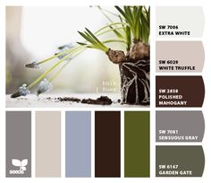 """Paint colors from Chip It! by Sherwin-Williams """"WHITE TRUFFLE"""" & """"SENSUOUS GRAY"""" FOR UPSTAIRS BATHROOM"""