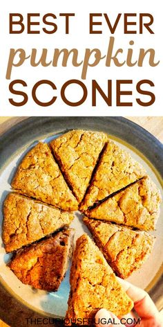These vegan pumpkin scones are SO delicious! They also happen to be gluten-free scones and are made with almond flour so theyre packed with protein. Gluten Free Pumpkin, Vegan Pumpkin, Healthy Pumpkin, Vegan Gluten Free, Paleo Pumpkin Recipes, Pumpkin Spice, Sugar Free Desserts, Sugar Free Recipes, Gluten Free Desserts