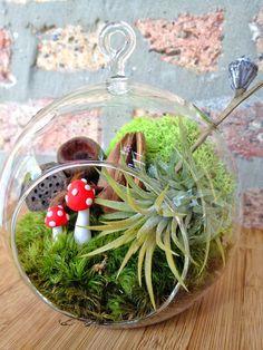 Mushroom & Air Plant Moss Terrarium - a wonderful valentines day or birthday idea - DON'T FORGET to add a CHARM. $27.00, via Etsy.