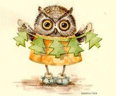 owl_600x498_002