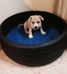 Dog bed made from an old tyre