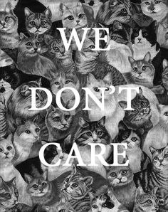 .Being cats..................