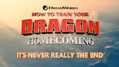 Dragon Armor, Film Trilogies, Hiccup And Astrid, Dreamworks Dragons, Dragon Trainer, Night Fury, Baymax, Toothless, How To Train Your Dragon