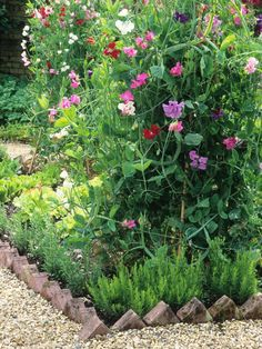 Different edging materials will bring different looks to your garden, from delicate and ephemeral to solid and hard working.