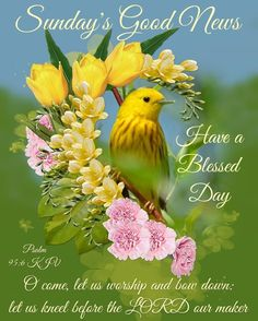 Happy Sunday Quotes, Blessed Sunday, Have A Blessed Day, Good Morning Quotes, Psalm 95, Good News, Blessings, Worship, Flow