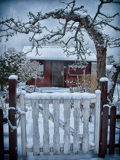 Winter garden, Sweden. Reminds me of the movie the Holiday. Would love to get away to a little cottage like this.