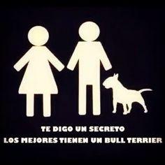 Foto de Instagram de Bull Terrier Club Esparza C.R • 12 de septiembre de 2014 a las 12:34
