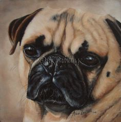 Sunny Pug - dog oil painting -- Anne Zoutsos