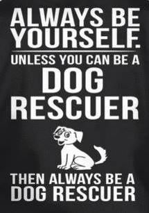 Always be yourself. Unless you can be a dog rescuer. Then always be a dog rescuer. That's what I want to do! Make a difference for the voiceless.
