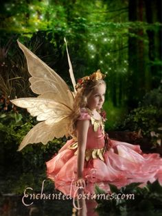 Thalia Faerie Wings - Medium : Enchanted fairy wings, wedding gowns and costumes, custom made