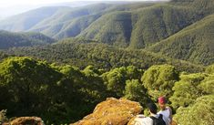 Why you need to visit Barrington Tops for arctic camping - Australian Traveller Barrington Tops, Crystal Clear Water, Great Stories, Australia Travel, Arctic, Wild Flowers, The Good Place, Places To Go, Waterfall