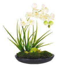 Faux White Orchid Arrangement