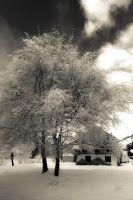 White&Grey Memories: La millor casa que he vist fins ara