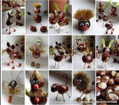 Chestnut season...