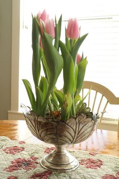 Replanted tulips. Makes me crave spring!