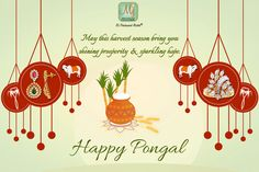 Wishing you a Pongal filled with showers of golden good fortune, to last forever. Happy Pongal, Harvest Season, Good Fortune, Showers, Celebration, Sparkle, Seasons, Christmas Ornaments, Holiday Decor
