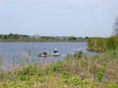 Picture Of Indrio Savannahs Preserve Fort Pierce FL
