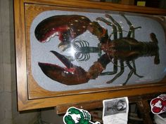 39 1/5 pound lobster Lobster Art, New England Homes, Boats, Moose Art, Animals, Animales, Boating, Animaux, Ships