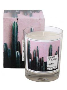 Bougie cactus %281%29