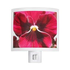 Lucrezia Night Light (€22) ❤ liked on Polyvore featuring home and lighting