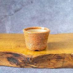 Round Speckled Textured Bonsai Pot in Orange Handmade | Etsy