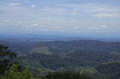 https://www.flickr.com/photos/prensa-rural/36577106253/in/feed