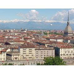 Hilton Suggests   Things to do in Turin: A Little Bull with a Big Heart - Hilton Suggests