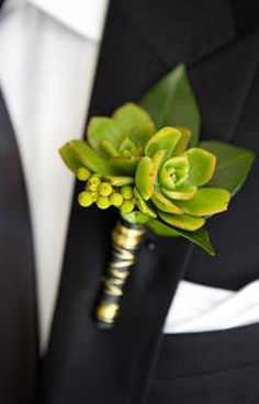 Groomsmen don't have to settle for girly boutonniere! Green Succulents with berry accents are so masculine.