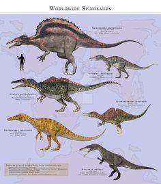Worldwide Spinosaurs by PaleoGuy on DeviantArt