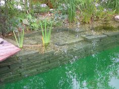 Teich/ Natural Swimming Pool, stone blocks