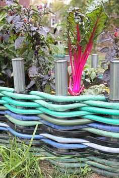 Garden edging using old hoses woven into a fence!  I think I'm going to encase my compost pile like this!
