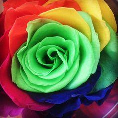 http://www.artifleurs-fleurs-artificielles.com/boutique/fleurs-naturelles-preservees/…