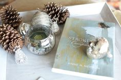 Holiday Vignette - Sparkling Silver and Glittery Pinecones