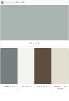 Benjamin Moore Silver Mink Contemporary Color Concepts