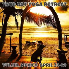 "@True Hot Yoga's photo: ""Spring fever? We have the cure! Join us in #Tulum.. #yoga #sand and #surf best medicine around. Space is limited: truehotyoga.com for all the info. #truehotyoga #retreat"""